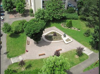 Appartager FR - Colocat.  studieuse et harmonieuse, cadre agréable - Esplanade, Strasbourg - €370