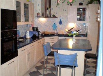 Appartager FR - Une Colocation  Sympa sur Niort - Niort, Niort - €300