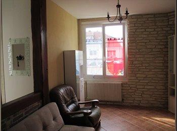 Appartager FR - recherche colocataire/trice - Fleury-les-Aubrais, Orléans - €300
