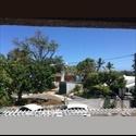 Appartager FR Recherche une colocataire - L'Etang-Salé, La Réunion Centre, La Réunion - € 375 par Mois - Image 1