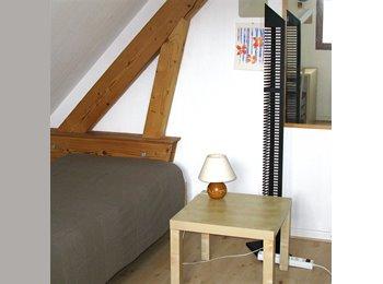 Appartager FR - Chambre meublée au vert - Colmar, Colmar - €400
