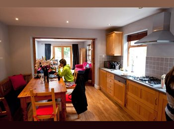 EasyRoommate IE - Great house in Portobello - Dublin City Centre, Dublin - €1517
