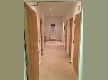 EasyRoommate IE - Double Room To Rent In Stunning City Apartment - Dublin, Dublin - €640