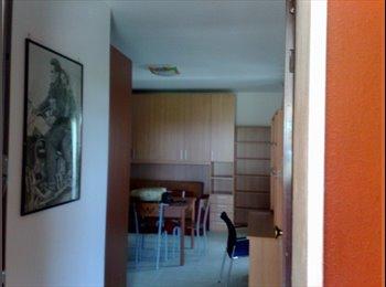 EasyStanza IT - affitto monolocale - Lecce, Lecce - €290