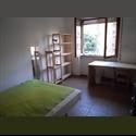 EasyStanza IT Singola Alberone - S.Giovanni - Appia Nuova, Roma - € 450 a Mese - Immagine 1