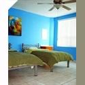 CompartoDepa MX Cuartos amueblados centro de mty.  CERCA DE LA UNI - Centro de Monterrey, Monterrey - MX$ 3000 por Mes - Foto 1
