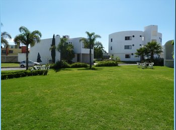 CompartoDepa MX - Se rentan departamentos con excelente ubicación - Cholula, Cholula - MX$6500