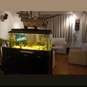 CompartoDepa MX Habitación, 5 mins de Sta fe, Estacionamiento - Cuajimalpa de Morelos, DF - MX$ 4600 por Mes - Foto 1