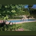 CompartoDepa MX PENTHOUSE CON CUARTOS DISPONIBLES - San Pedro - Valle, Monterrey - MX$ 4500 por Mes - Foto 1