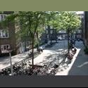 EasyKamer NL furnished studio for couple - Rivierenbuurt, Zuider Amstel, Amsterdam - € 1095 per Maand - Image 1