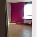 EasyKamer NL kamer(s) beschikbaar per 1-10-2014-new update!!) - Lelystad - € 450 per Maand - Image 1