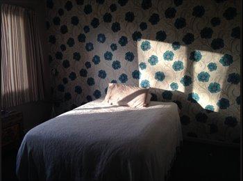 NZ - Room in Atawhai Nelson - Atawhai, Nelson - $1083