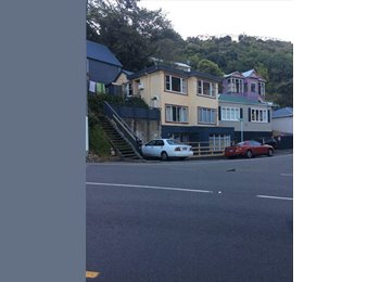 NZ - Cheap, sunny, awesome location room for rent! - Wellington, Wellington - $585