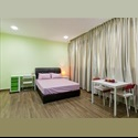 EasyRoommate SG Hougang MRT - Realty Park Semi-Serviced studio roo - Hougang, D19 - 20 North East, Singapore - $ 1900 per Month(s) - Image 1