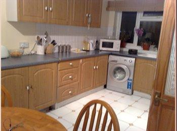 EasyRoommate UK - Large Room in Caversham (downstairs of my house) - Caversham, Reading - £550
