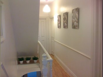 EasyRoommate UK - NO BOND FAB BRIGHT DOUBLE ROOM BILLS INC NET INC - nether Edge, Sheffield - £390