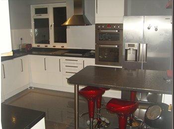 EasyRoommate UK - Double bedroom 10ft6 x 12ft9,refurbished - Farnborough, Hart and Rushmoor - £450