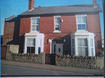EasyRoommate UK - beautiful luxury 4 bedroom detached house - Derby, Derby - £400