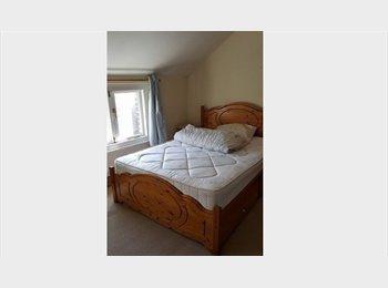 EasyRoommate UK - Professional room nice house/area cen. Kings Lynn - Kings Lynn, Kings Lynn - £360