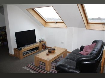 EasyRoommate UK - Double rooms in shared duplex 65-90pw inc. - Fairfield, Liverpool - £280
