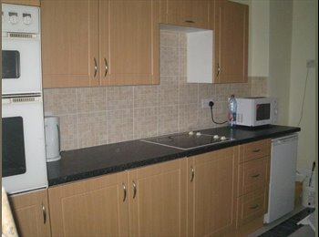 EasyRoommate UK - THREE ROOMS IN A 5 BEDROOMED DORMA COTTAGE - High Barnes, Sunderland - £260