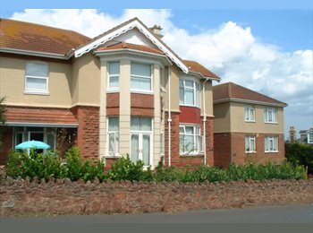 EasyRoommate UK - Double room to let - Paignton, Paignton - £368