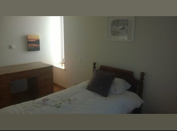 EasyRoommate UK - Room for let in local market house - Guernsey, Guernsey - £800