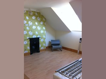 EasyRoommate UK - 3 story house with sea views - Grimsby, Grimsby - £325