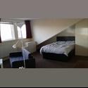 EasyRoommate UK 1 ENSUITE bedsits FREE october - Potternewton, Leeds - £ 400 per Month - Image 1