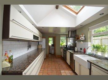 EasyRoommate UK - Huge, Beautiful en-suite room - Dane Hills, Leicester - £400