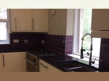 EasyRoommate UK - Rooms in recently renovated property - Torquay, Torquay - £303