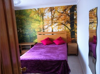 EasyRoommate UK - Double room - Taunton, South Somerset - £410