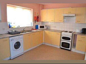 EasyRoommate UK - Towles Mill/Bridgeland Road, Loughborough £325pm - Loughborough, Loughborough - £325