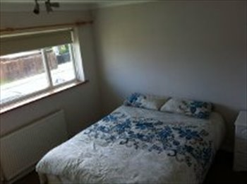 EasyRoommate UK - large double room quiet area close to chichester - Chichester, Chichester - £430