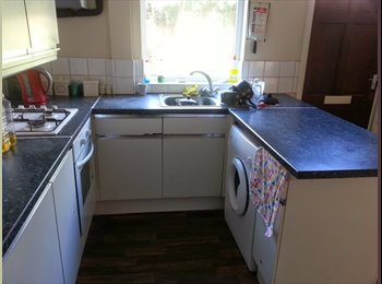 EasyRoommate UK - 4 bed room share for professionals - Heeley, Sheffield - £368