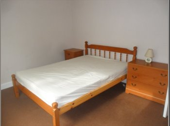 EasyRoommate UK - Furnished double room single only - Newton Abbot, Newton Abbot - £347