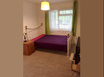 EasyRoommate UK - Furnished Double room in friendly family home - Basingstoke, Basingstoke and Deane - £450