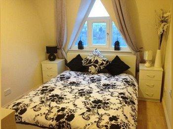 EasyRoommate UK - ** Half price rent ** Newly refurbished house - Woodsetton Village, Dudley - £347
