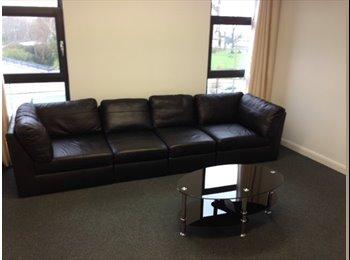 EasyRoommate UK - En-suite student accommodation - Salford City Centre, Salford - £360