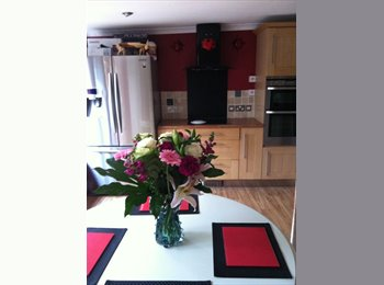 EasyRoommate UK - Double room - Taunton, South Somerset - £442