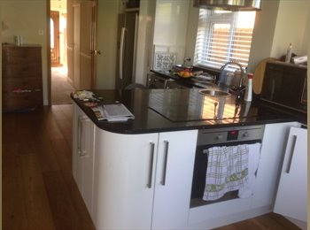 EasyRoommate UK - Coxheath - room to let in a comfortable house - Coxheath, Maidstone - £425