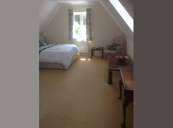 EasyRoommate UK - Top floor double room to let - Hastings, Hastings - £542