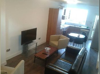 EasyRoommate UK - Recently refurbished house in the heart of Crookes - Crookes, Sheffield - £303