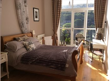 EasyRoommate UK - luxury apartment proffesional lady - Huddersfield, Kirklees - £450