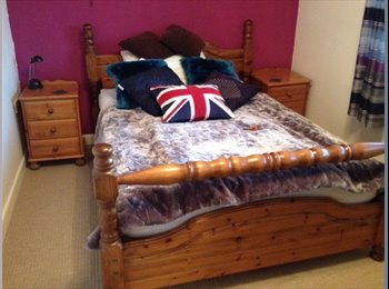 EasyRoommate UK - 1 dble bedroom in quiet location - Mon-Fri - Pill, Bristol - £450