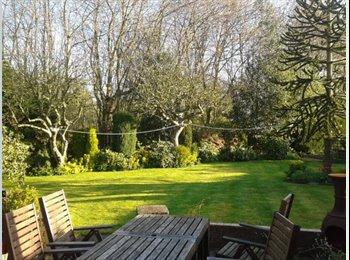 EasyRoommate UK - Single room comfy house share in Wickersley - Wickersley, Rotherham - £250