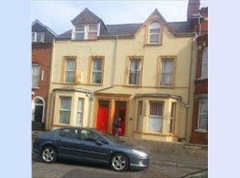 EasyRoommate UK - Rooms in 25 Ashley Ave, Lisburn Road - Belfast, Belfast - £220