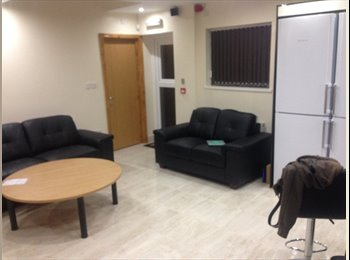 EasyRoommate UK - Double en-suite room in just-refurbished house - Selly Oak, Birmingham - £390