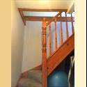 EasyRoommate UK Loft to rent - £100 per week in zone 3 - Walthamstow, East London, London - £ 433 per Month - Image 1