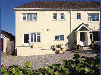 EasyRoommate UK - Large House, parking gym eqpt, Highweek. - Highweek, Newton Abbot - £400